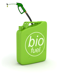 BioFuel Warning